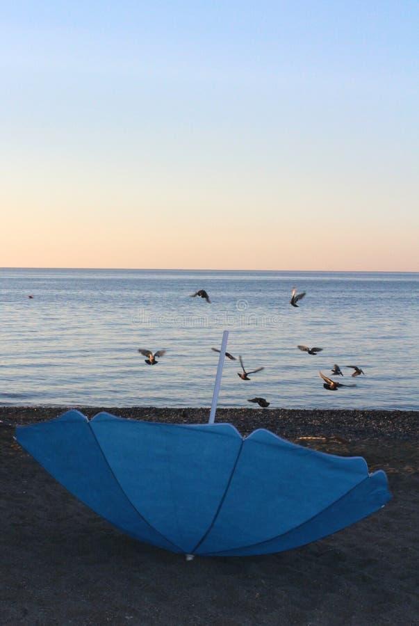 Зонтик перевернутый синью на пляже стоковые фотографии rf
