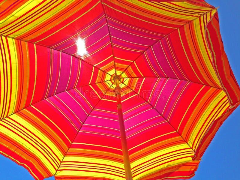 Зонтик пляжа смотря вверх на цветах на яркий летний день стоковые изображения
