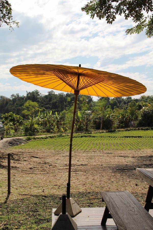 Зонтик сидит на стойке с фоном поля риса стоковые фото