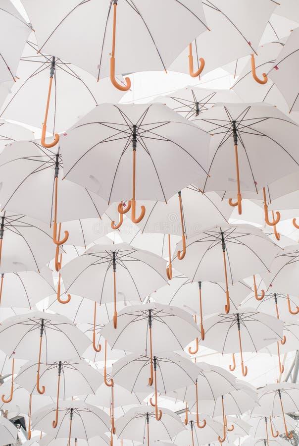 Зонты стоковая фотография