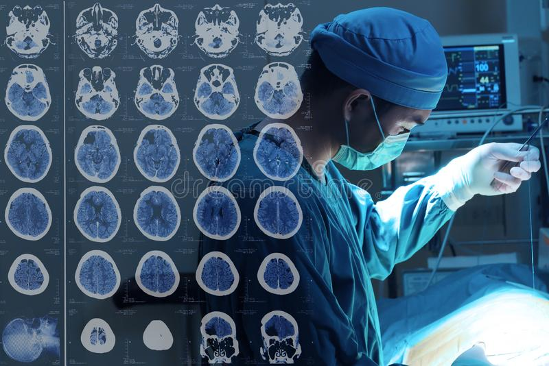 Зооветеринарная хирургия в комнате деятельности с изображениями от компьютеризированной томографии мозга стоковые изображения rf