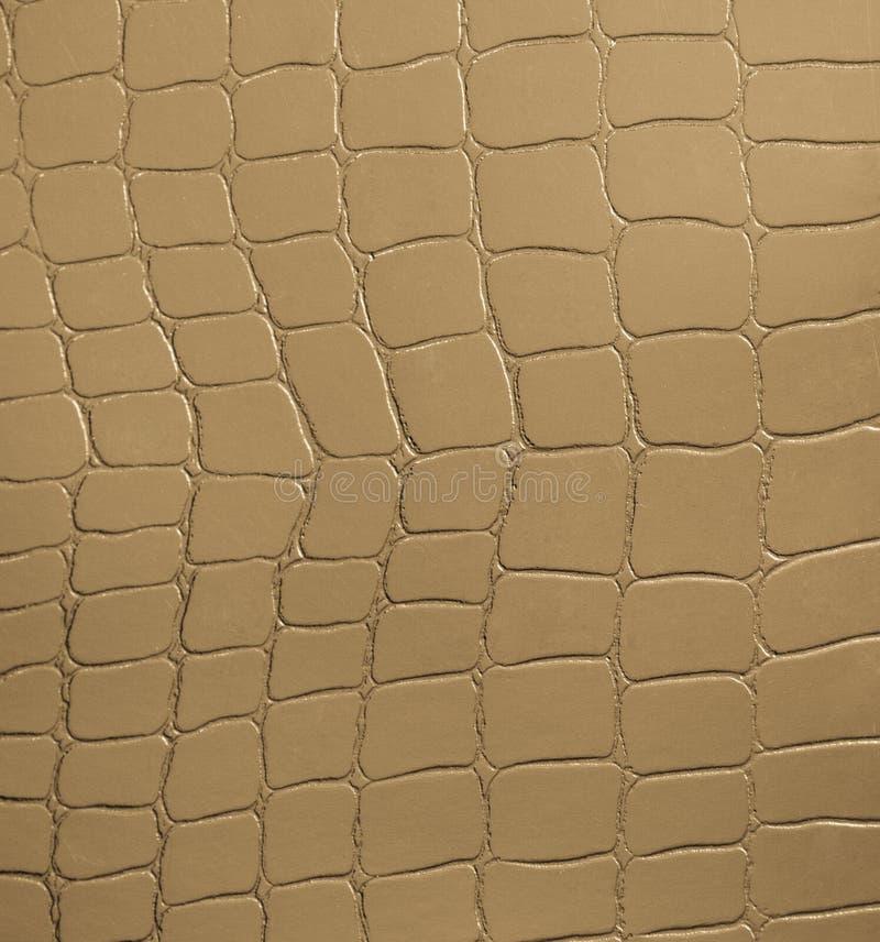 Золотая кожа стоковая фотография