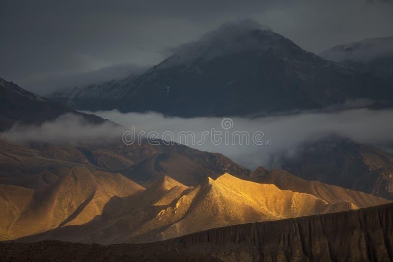золотистые холмы стоковая фотография