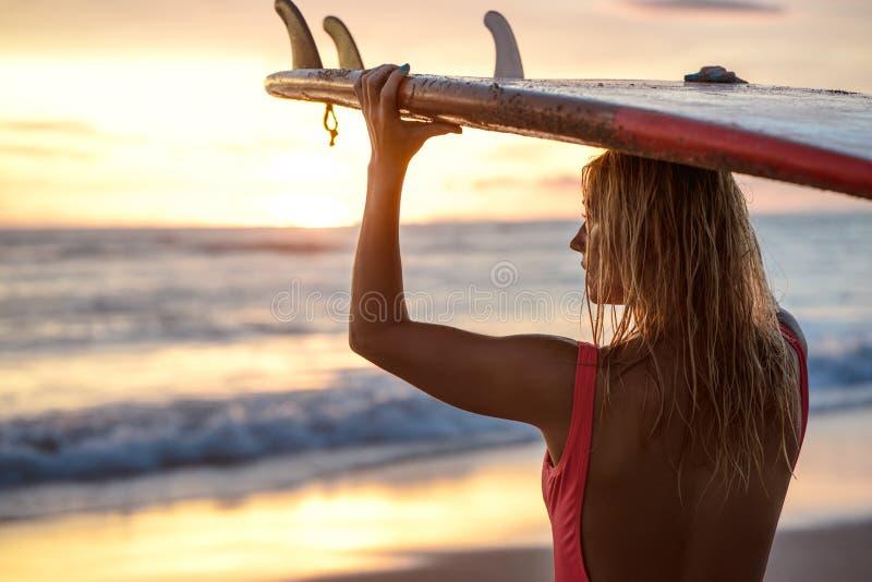 золотистый заниматься серфингом стоковые изображения rf