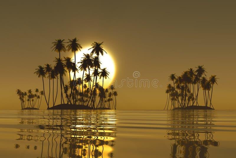 золотистый заход солнца тропический иллюстрация вектора