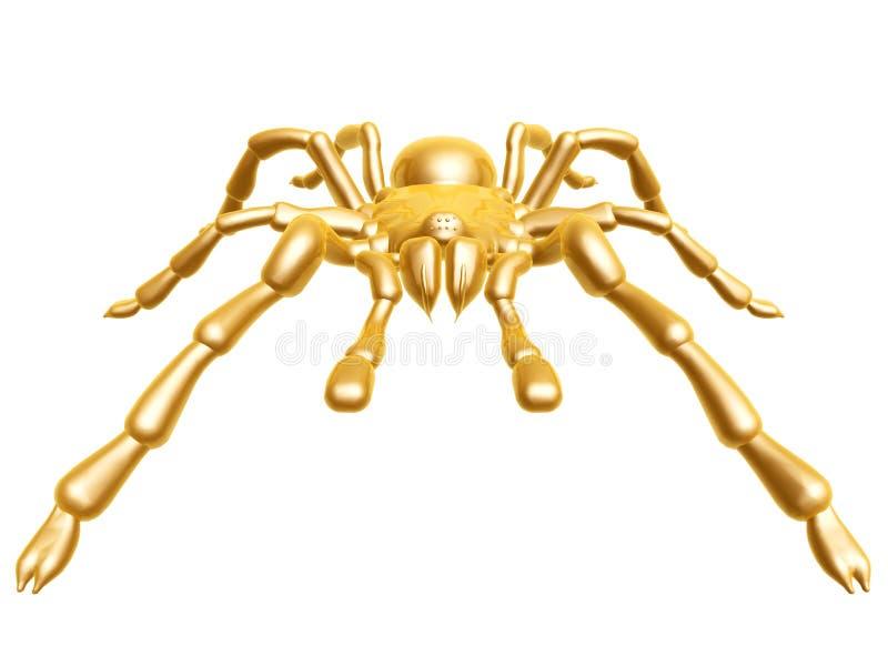золотистый спайдер стоковые изображения