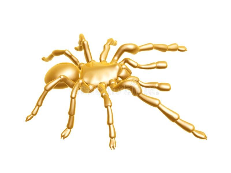 золотистый спайдер стоковые фото