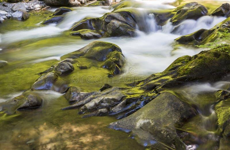 Золотое река герцогов Sol стоковая фотография