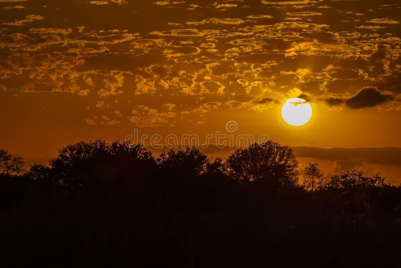 Золотой заход солнца на самолетах Техаса стоковое фото rf