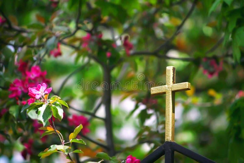 Золотой крест на загородке церков стоковая фотография rf
