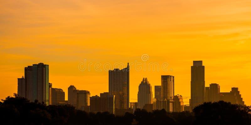 Золотой парк zilker горизонта Остина Техаса стоковое изображение rf