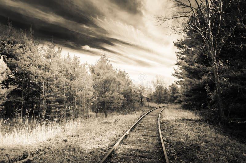 Золотой поезд тонов отслеживает Stouffville Онтарио стоковые фотографии rf