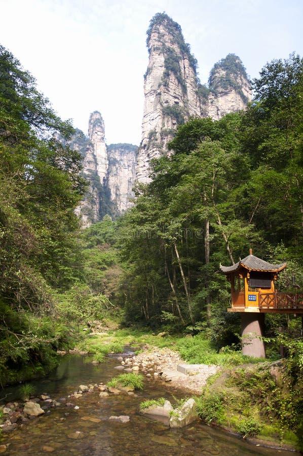 Золотой поток Zhangjiajie хлыста стоковое изображение rf