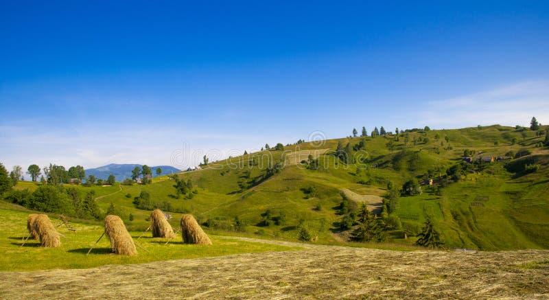 Золотой сеновал на луге горы лета стоковые фотографии rf
