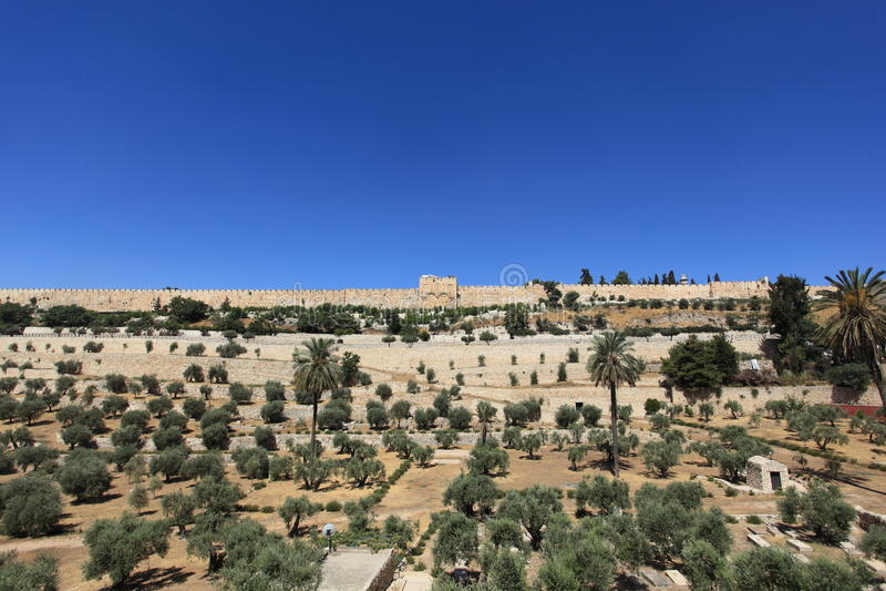 Золотой строб, стены города Иерусалима старые стоковое изображение