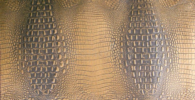Золото/темный Брайн выбили текстуру аллигатора кожаную стоковые фотографии rf