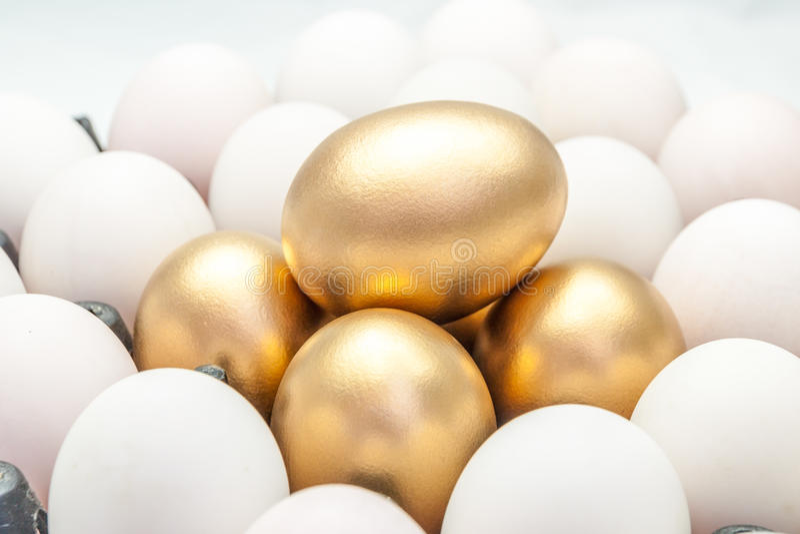 Золотые яичка среди белых яичек стоковые изображения rf