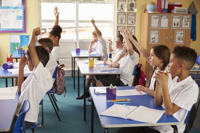 Зрачки поднимают руки в уроке на начальной школе, взгляде со стороны стоковое фото