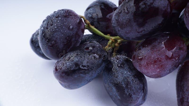 Зрелая красная виноградина изолированная на белой предпосылке стоковые фото