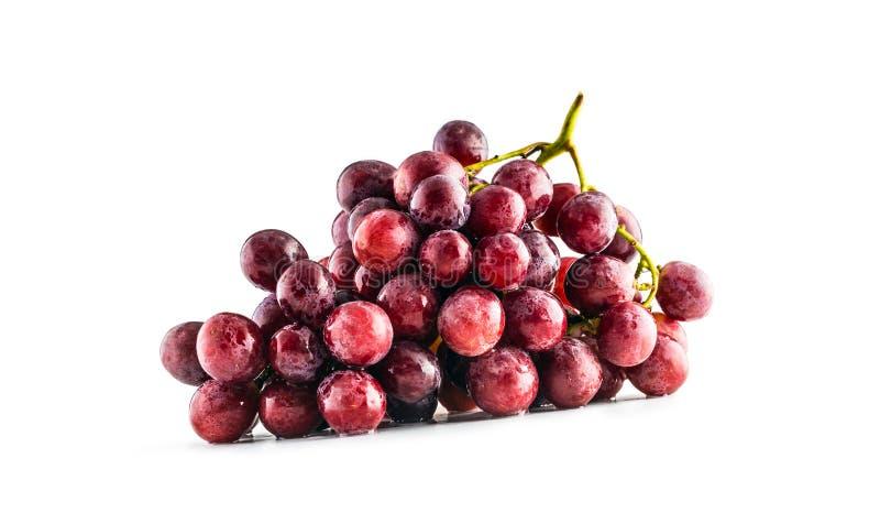 Зрелая красная виноградина на изолированной белой предпосылке стоковые фото