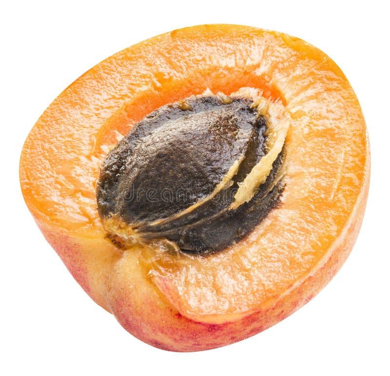Зрелое поперечное сечение ` s абрикоса с семенем абрикоса в ем Клиппирование p стоковое изображение