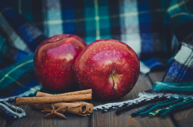 Зрелое яблоко осени и теплый шерстяной шарф Специи зимы стоковые фотографии rf