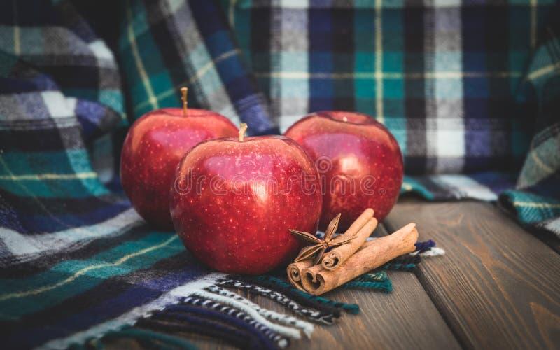 Зрелое яблоко осени и теплый шерстяной шарф Специи зимы стоковые изображения rf