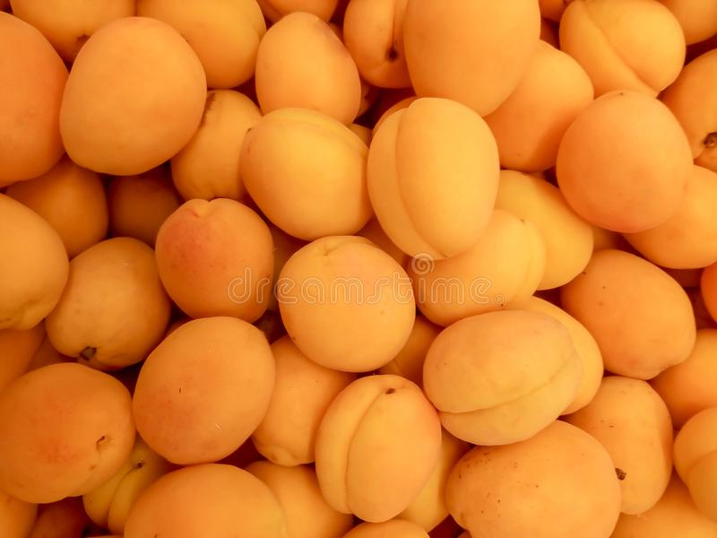 Зрелые абрикосы приносят плоды предпосылка сочная стоковое изображение