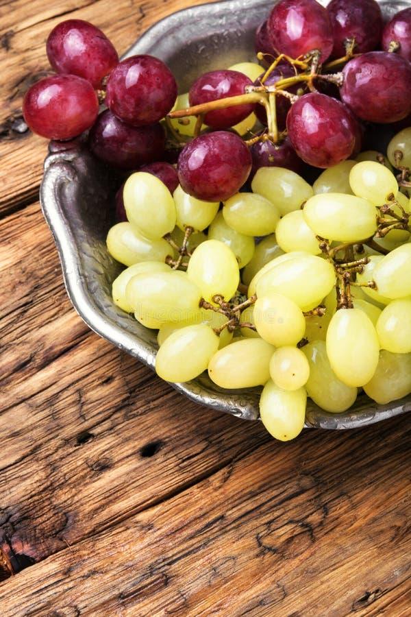 Зрелые виноградины осени стоковые изображения rf