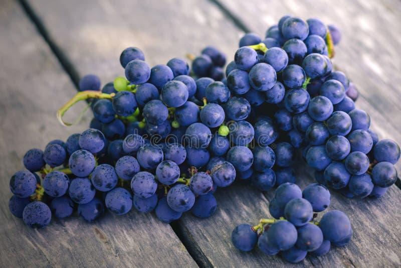 Зрелые голубые и пурпурные виноградины на старом сером деревянном столе стоковое изображение