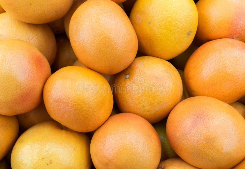 зрелые грейпфруты на рынке стоковое изображение