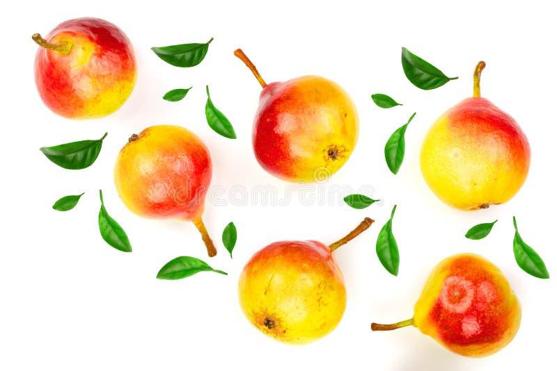 Зрелые красные желтые плодоовощи груши изолированные на белой предпосылке Взгляд сверху Плоская картина положения Комплект или со стоковые изображения