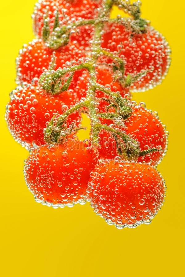 Зрелые красные томаты вишни стоковая фотография rf