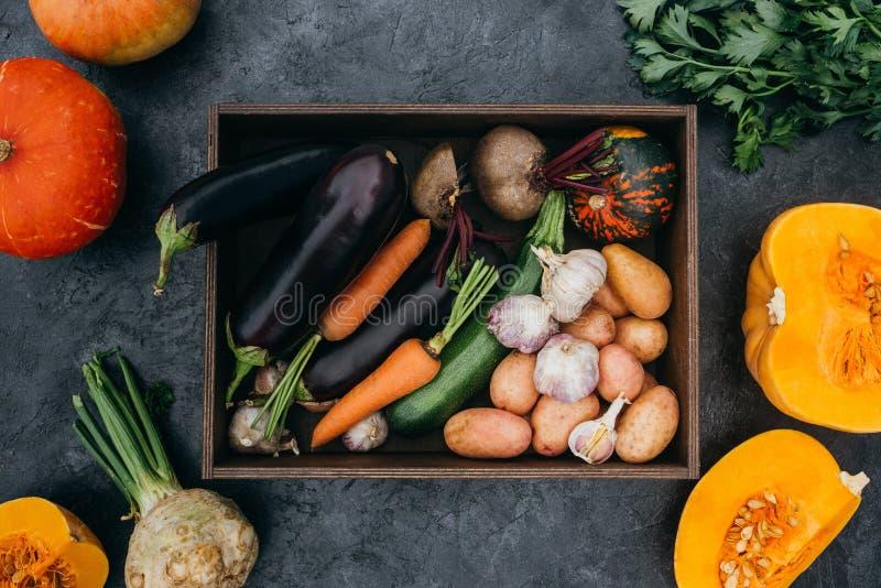 Зрелые овощи в коробке стоковое изображение rf