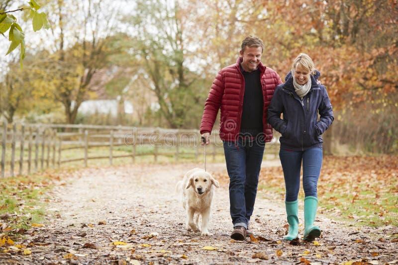Зрелые пары на прогулке осени с Лабрадором стоковое изображение rf
