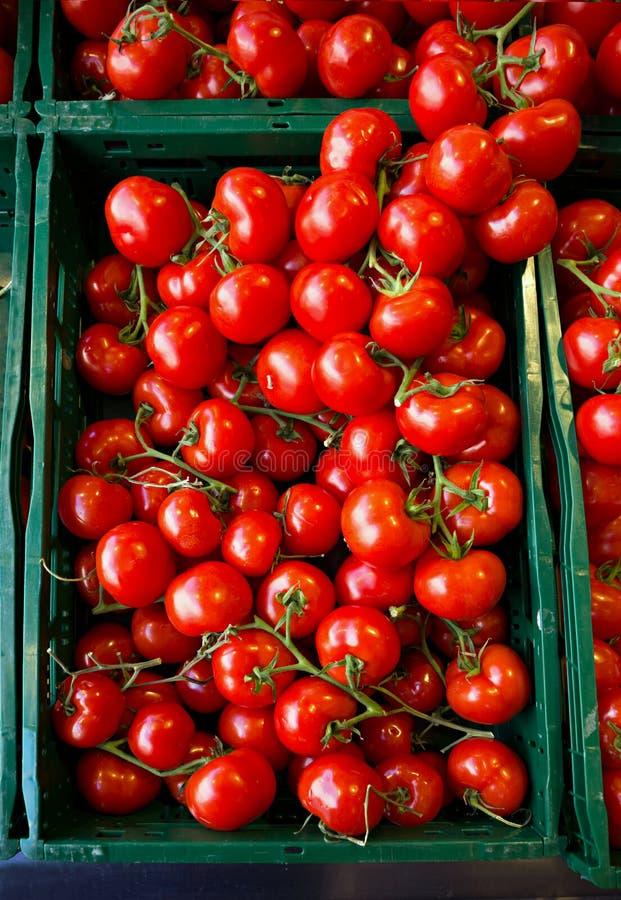 Зрелые свежие красные томаты в рынке овощей стоковая фотография
