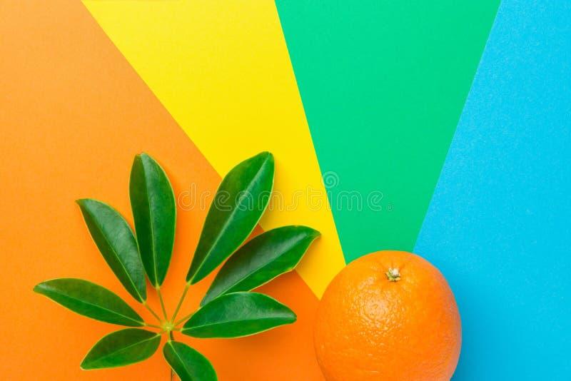 Зрелые сочные оранжевые лист тропического завода на pinwheel радуги пестротканом striped sunburst предпосылка Здоровая сбалансиро стоковое изображение rf