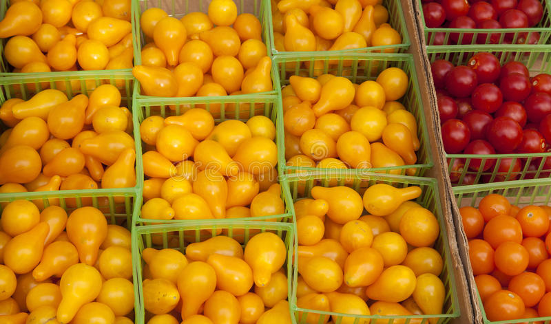 Зрелые томаты груши и вишни. стоковые фото