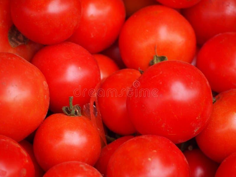 Зрелые томаты на рынке стоковое фото rf