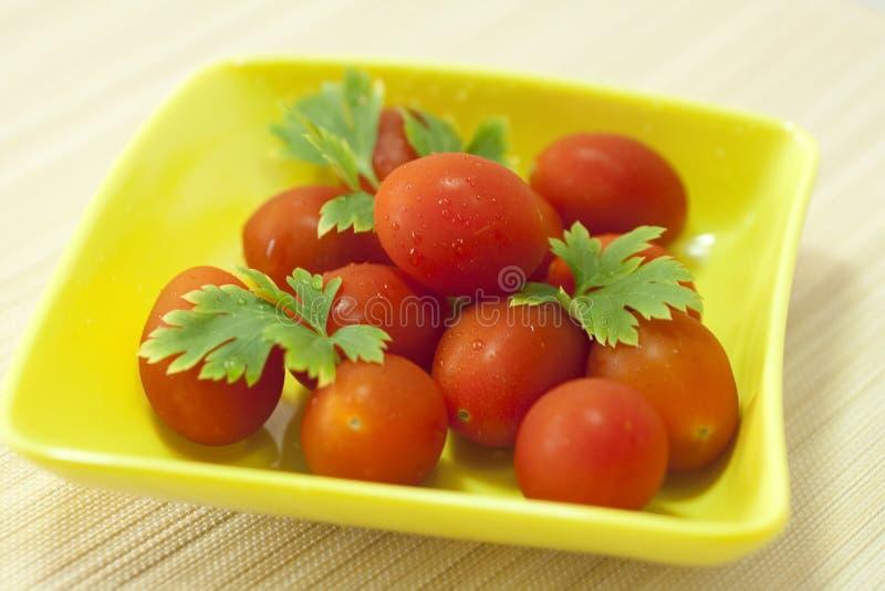 зрелые томаты стоковая фотография