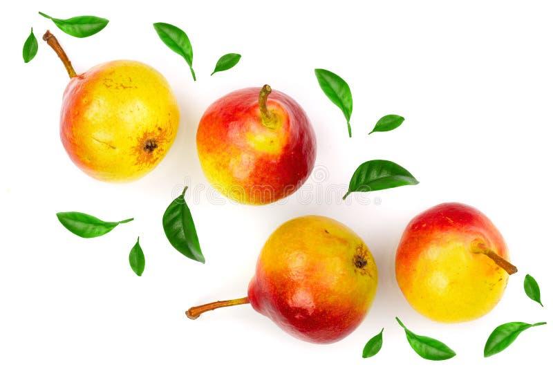 4 зрелых красных желтых плодоовощ груши изолированного на белой предпосылке Взгляд сверху Плоская картина положения стоковые изображения