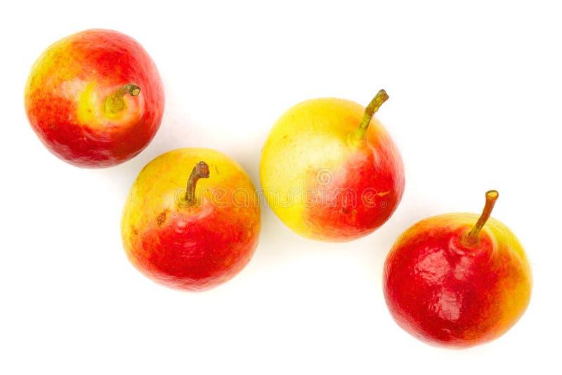 4 зрелых красных желтых плодоовощ груши изолированного на белой предпосылке Взгляд сверху Плоская картина положения стоковая фотография