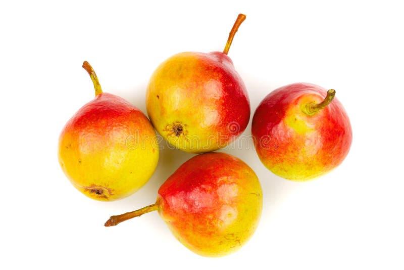 4 зрелых красных желтых плодоовощ груши изолированного на белой предпосылке Взгляд сверху Плоская картина положения стоковая фотография rf