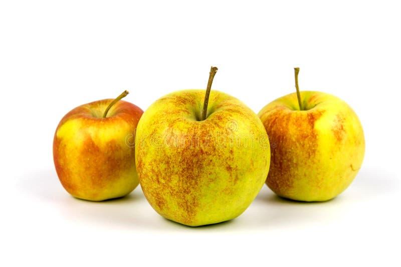 3 зрелых яблока на белой предпосылке стоковое изображение rf