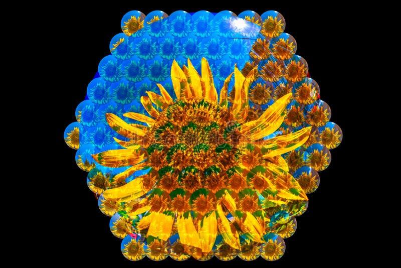 Зрение пчелы иллюстрация штока