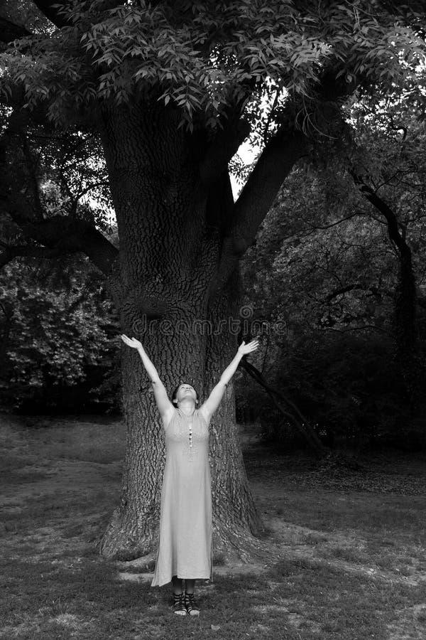Зрелая женщина около дерева в парке стоковые изображения rf