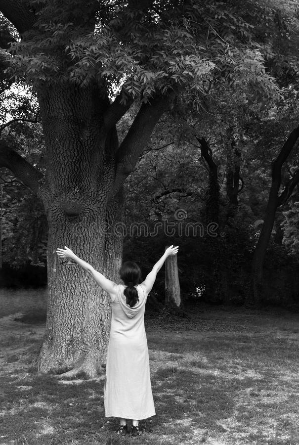 Зрелая женщина около дерева в парке стоковое изображение rf