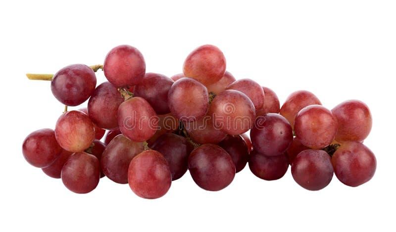 Зрелая красная виноградина на белой предпосылке стоковые изображения
