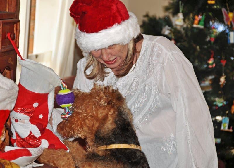 Зрелое утро рождества чулка отверстия женщины и собаки стоковые фотографии rf