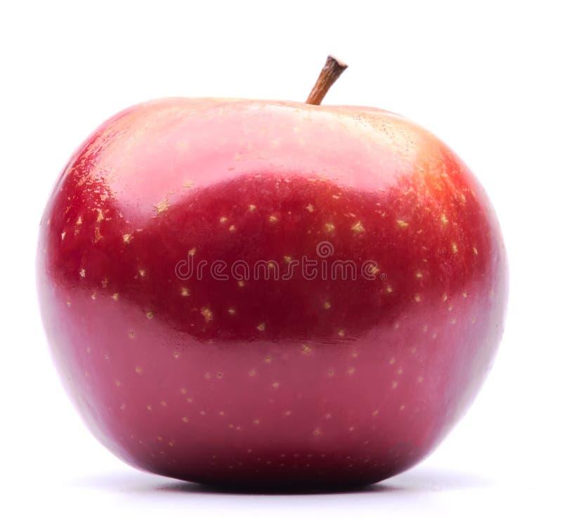 зрелое яблока красное стоковое изображение
